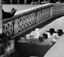 venezia foto
